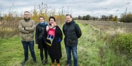 Roeselare wil dit weekend inwoners 9.000 bomen laten planten