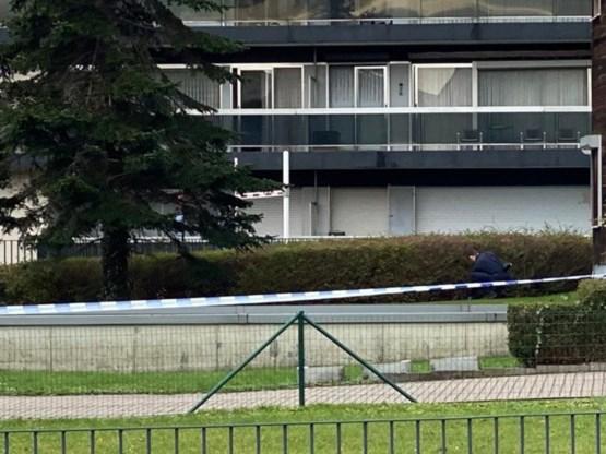 Onderzoek naar twee ontplofte granaten op grasperk in Antwerpen