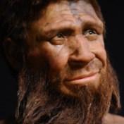 En als de neanderthalers nu eens brute pech hadden?