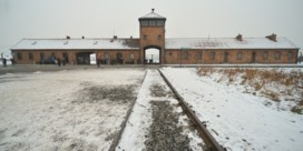Ook bol.com stopt verkoop misplaatste kerstversiering met foto's van Auschwitz