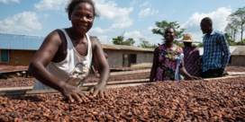 'Alles is veranderd, maar de cacaoboer blijft straatarm'