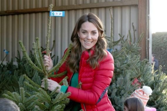 Koop ik nog een echte kerstboom?