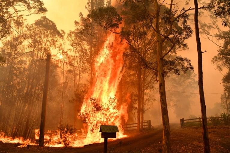'Megabrand' in Australië dreigt huizen te verwoesten