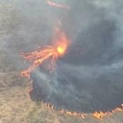 Vuurtornado in Australië, brandweer krijgt bosbranden niet onder controle