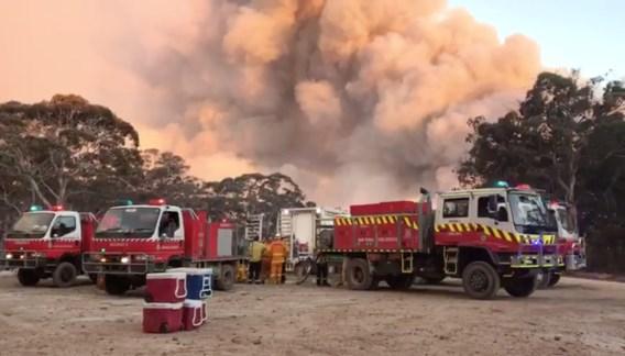 Bosbranden in Australië: giftige wolk bereikt hoofdstad