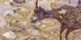 Oudste jachttafereel gevonden in Indonesië
