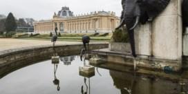 Africamuseum zet gids op non-actief: 'Grenzen overschreden'