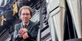 Sint-Baafskathedraal vindt witte raaf in Dendermonde