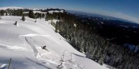 Opvallend veel zware lawines in de Alpen: minstens vier doden