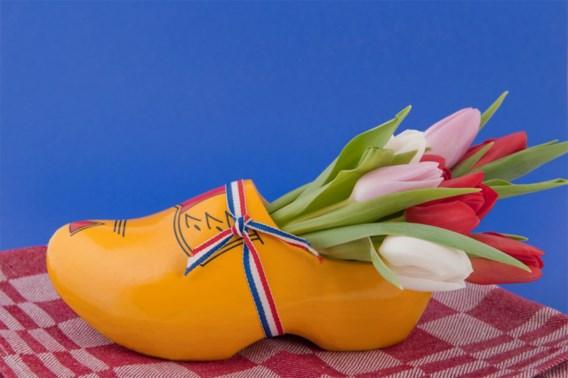 Nederland wil af van bijnaam 'Holland'