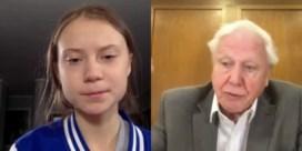 Thunberg ontmoet Attenborough via Skype: 'Jouw documentaires hebben mijn ogen geopend'
