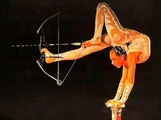 Circusartiest ernstig gewond na val uit nok