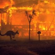 Deze foto verbeeldt catastrofe in Australië