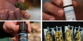 Vooral wie pijn lijdt of slecht slaapt, zoekt heil in medicinale cannabis