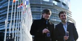 Europarlementslid. Eindelijk!