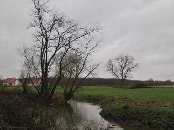 Afwisselend regen en droge periodes