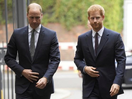 Britse prinsen reageren op vals nieuwsbericht over pestgedrag