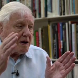 'Het crisismoment is aangebroken' waarschuwt David Attenborough