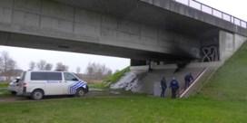 Nooit eerder gezien in België: kwekers verstoppen honderden wietplanten in brug