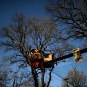 Fel bevochten Duitse oerbos mag blijven, maar kolencentrales moeten dicht