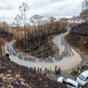 IN BEELD. Renners koersen in Tour Down Under door afgebrand gebied: 'Verschrikkelijk om te zien'