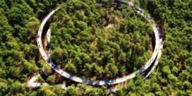 Fietsen door de Bomen wint goud in Los Angeles