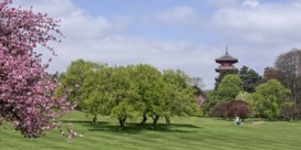 Brusselse regering steunt openstelling park van Laken