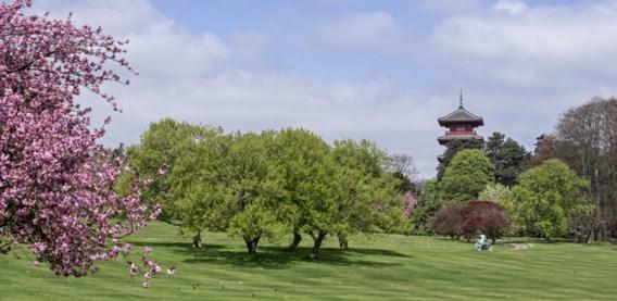 Brusselse regering 'wil mee nadenken' over openstelling park van Laken
