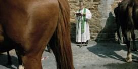 Haan mag kraaien, paard mag naar paard ruiken