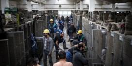 Europese stroomexport zakt naar dieptepunt