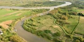 Natuur lijdt onder drooglegging polders