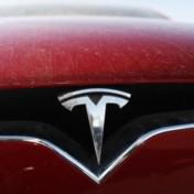 Is Tesla een tulpenbol?
