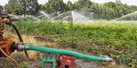 Zo hoog staat het grondwater in uw buurt
