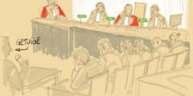 Slotpleidooi voor het hof van assisen