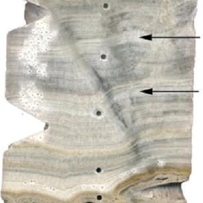 De stalagmiet, een weerbericht uit het verleden