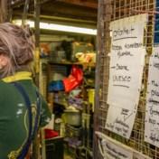 'Als het carnaval fout loopt, is de burgemeester mee verantwoordelijk'