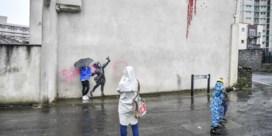 Nieuw werk van Banksy al beschadigd