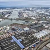 Zevenhonderd kilo cocaïne ontdekt in Antwerpse haven