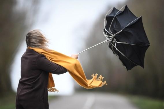 KMI waarschuwt opnieuw voor veel wind, nummer 1722 actief