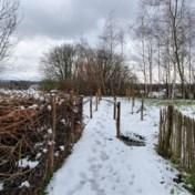 Opnieuw kans op besneeuwde en gladde wegen