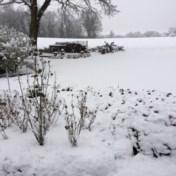 (Smeltende) sneeuw veroorzaakt gladde wegen: 'Pas je rijgedrag aan'