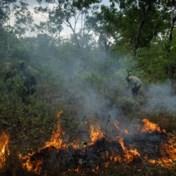 Aboriginals bestrijden vuur met vuur