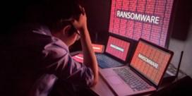 Hasselts bedrijf wapent kmo's tegen cybercriminelen
