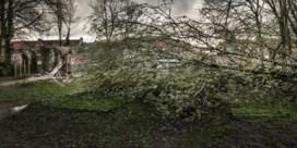 Noodnummer 1722 geactiveerd, kans op storm of wateroverlast