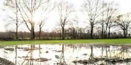 Bakken regen, maar grondwaterstanden nog steeds te laag