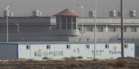 'Oeigoeren ingezet als dwangarbeiders voor grote merken'