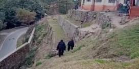Indische grenswachters verjagen makaken door zich te verkleden als gorilla's