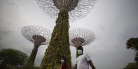 Op uitwisseling in Singapore: 'Hier engageert iedereen zich'