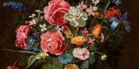 Clara Peeters naar museum New York
