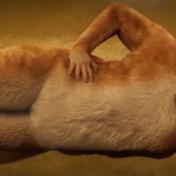 Zes Razzies voor film 'Cats'